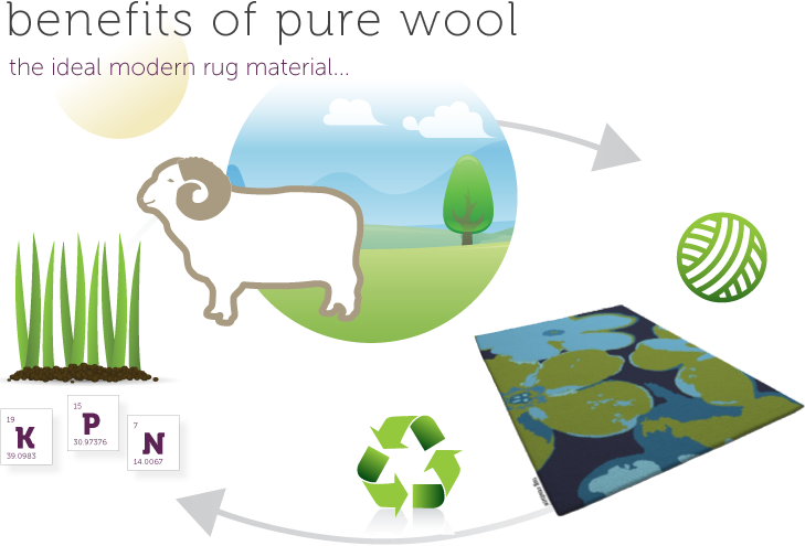 benefits of new zealand wool