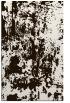 rug #1294795 |  brown popular rug