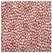 rug #175713 | square red animal rug