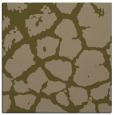 rug #331105 | square mid-brown animal rug